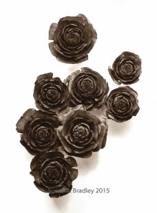 Pine Cones Not Roses Var8